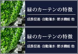 緑のカーテンの特徴 成長促進・自動潅水・節水機能 他
