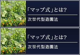 次世代型造園法「マップ式」とは? 日本最大級の緑のカーテンを実現